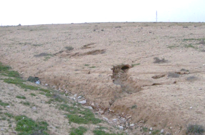 Soil Erosion #1