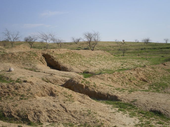 Land Degraded by Contour Trenching