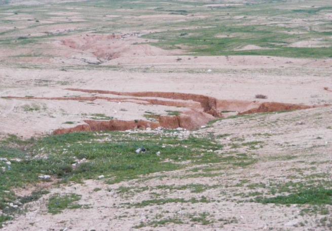 Soil Erosion #2