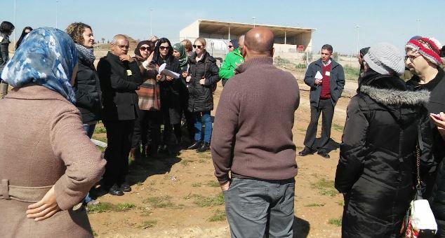 Wadi-Beersheva-2-small
