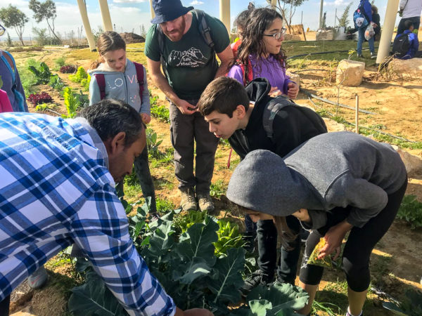 Students from Hura and Rishon Letzion at Project Wadi Attir